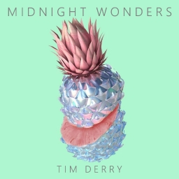Cover of track MIDNIGHT WONDERS by Tim Derry