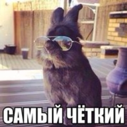 Avatar of user Andrey1Auditore