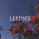Cover of album Rodeo Flares by leedsee