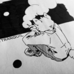 Cover of track tranquil(edit)2 by Just kidding Tai's here.