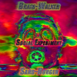 Cover of track Social Experiment by sndbrgn