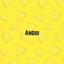 Avatar of user Andui